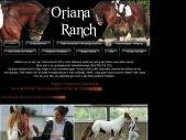 Oriana Ranch, Tinkerdekhengst Silas