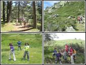 14164 Pico del Nevero