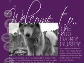 The Too Hairy Husky