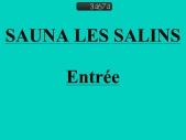 SAUNA GAY LES SALINS
