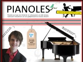 Pianoles Amersfoort - Frank Oppedijk