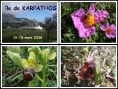 ÎLE DE KARPATHOS- printemps
