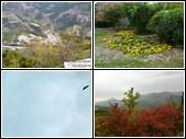 10-15 Le rocher des vautours