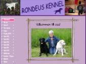 My Website