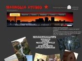 magnoliastudiophotography