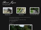 jagerbart.nl natuur, paarden en evenementen fotografie