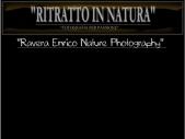 Ritratto in Natura,Ravera Enrico Nature Photography.
