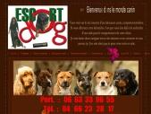 Escort-dog