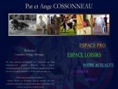 Pat & Ange Cossonneau: Stage Dressage, Voltige Cosaque, Cascade et Pensions et Poneys dans la Drome