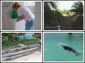 Curacao september 2007