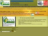Oliva Service Lecce