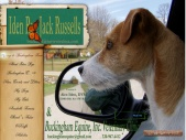 Iden Rye Jack Russells & Buckingham Equine, Inc. Veterinary Clinic