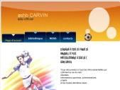 ashb carvin site officiel