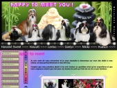 SHIH TZU - ELEVAGE HAPPY TO MEET YOU